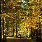 Autumn Stroll by Chris Clark