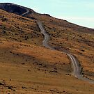 The Road Less Traveled - Steens Mountain, Harney County, OR by Rebel Kreklow