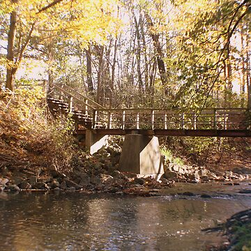 Bridge over Pikes Creek by hammye01
