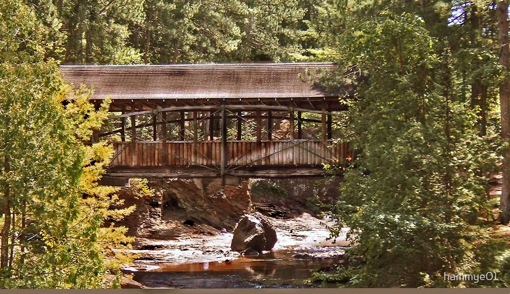 Bridge at Amnicon Falls by hammye01