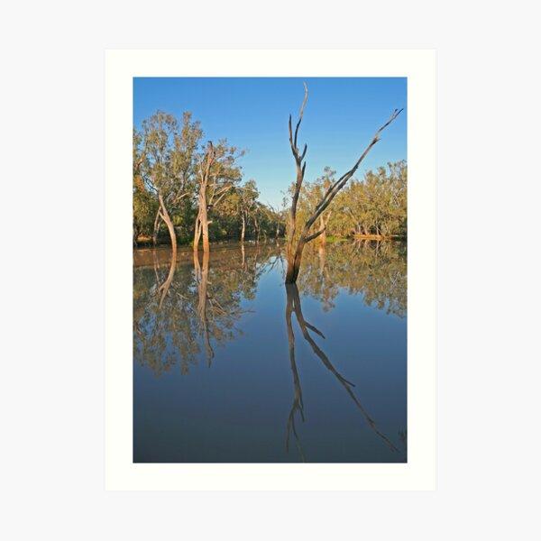 Creek at Nindigully, Qld Art Print