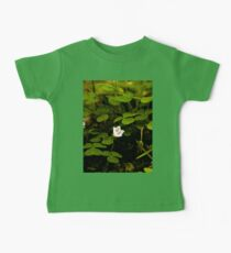 Wood Sorrel, Ness Woods, County Derry Kids Clothes