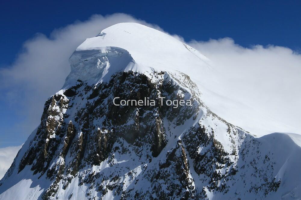 majestic mountain by Cornelia Togea