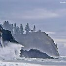 CAPE DISAPPOINTMENT  by Rhonda R Clements
