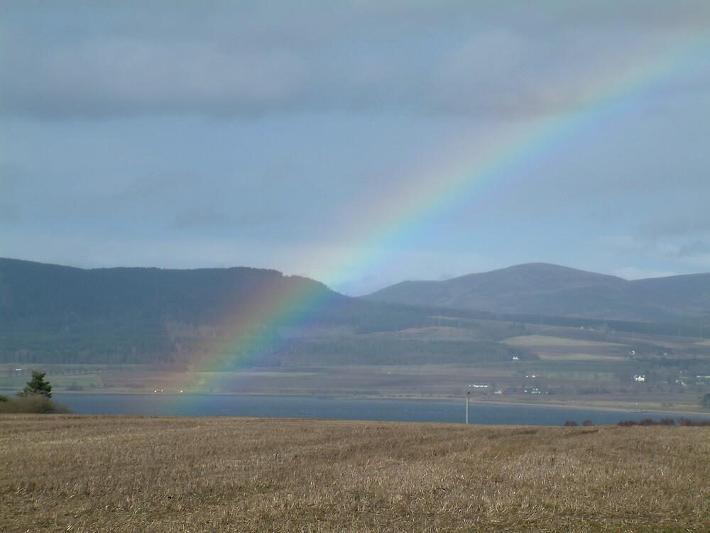 Rainbow by Linda Bretherton