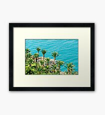 Aerial View Of Green Palm Trees And Blue Ocean Landscape Framed Print
