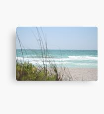 gulf of mexico Canvas Print
