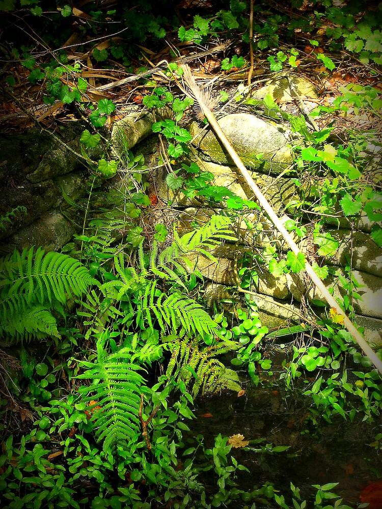 Tiny Jungle by AmeliaStrazz