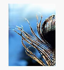 Golden Feathers Photographic Print