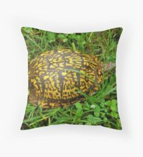 Eastern Box Turtle in Alabama Throw Pillow