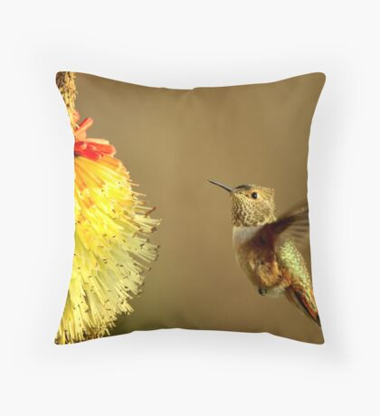 Flight of the Hummer Throw Pillow