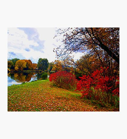 Late October Photographic Print