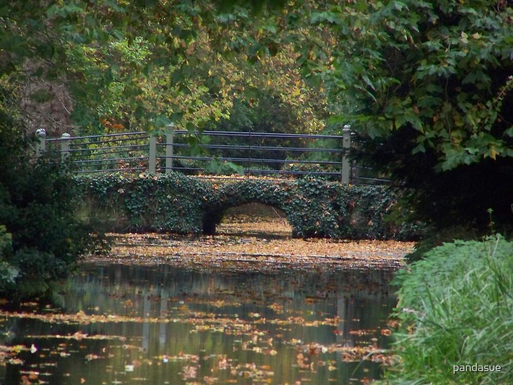 old bridge by pandasue