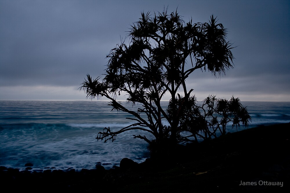 Morning Swell by James Ottaway