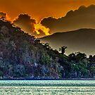 Tropical Colors by Bernai Velarde