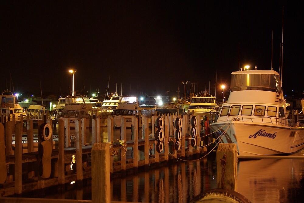 freo harbour by dodgsun