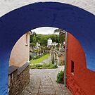 Tunnel Vision at Portmeirion by Mark Baldwyn