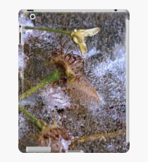 Frozen Solid iPad Case/Skin