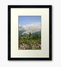 Montana Framed Print