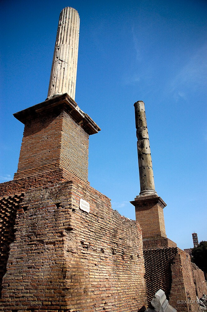 The Forum, Rome, Italy by aaxford
