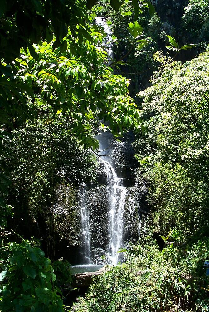 Maui Waterfall by StudioN
