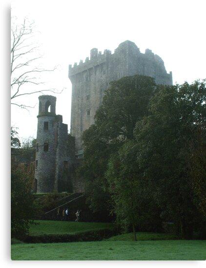 Blarney Castle in  the Mist by Margaret Zita Coughlan
