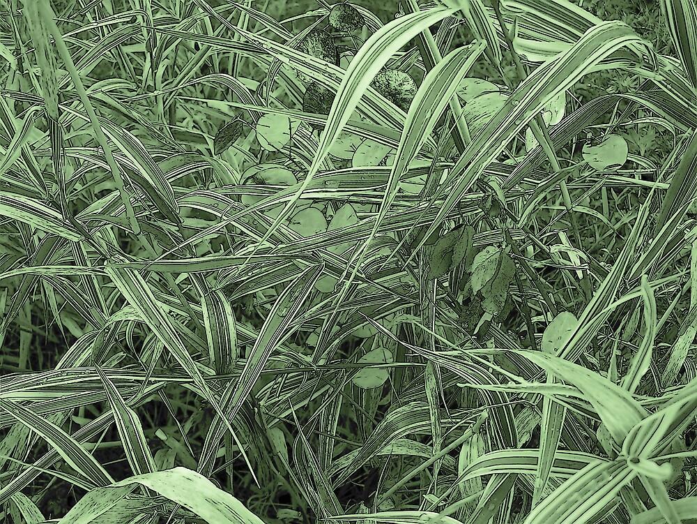Green Grass by Gene Cyr