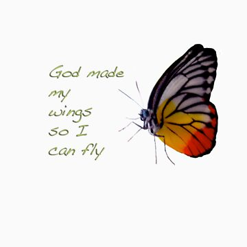 God Made My Wings So I Can Fly by knightingail