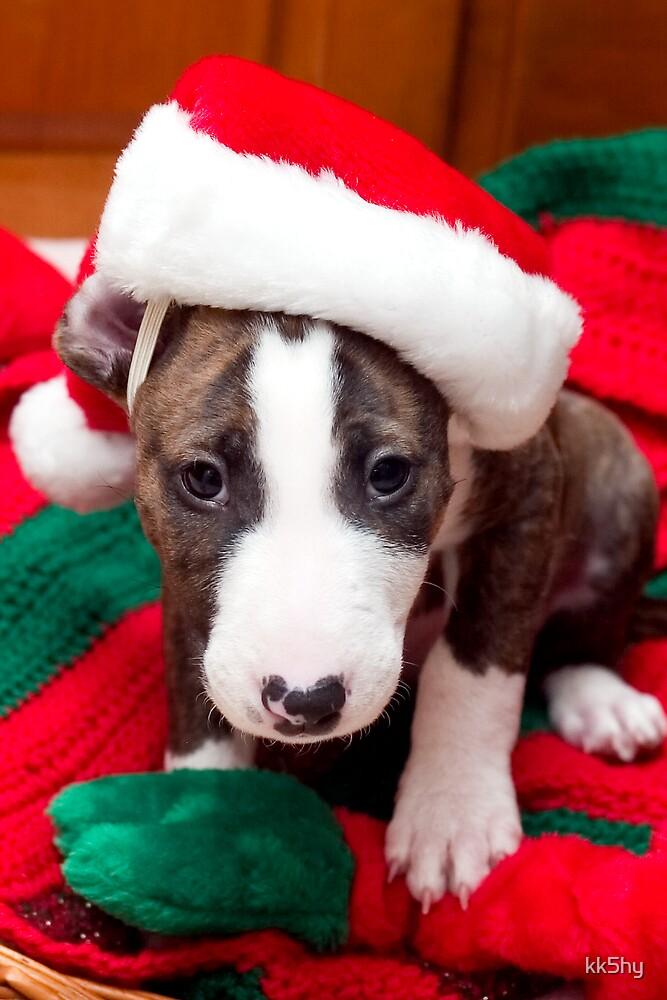 Santa Puppy by kk5hy