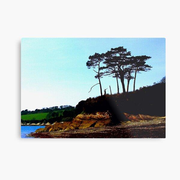 Lone Trees Metal Print