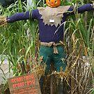 scarecrow, scarecrow !!!! by jadetamara