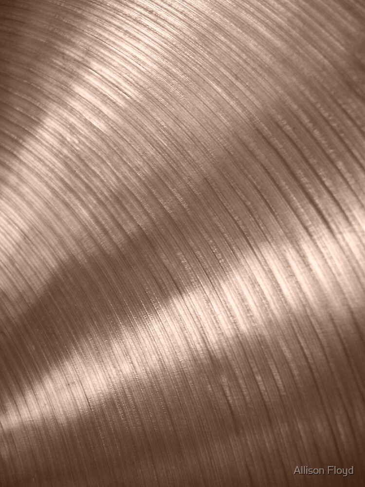 Cymbal by Allison Floyd