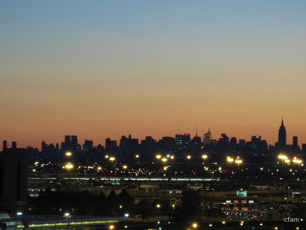 New York City Skyline at Sunrise by cfam