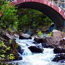 Water Under The Bridge by Ljartdesigns