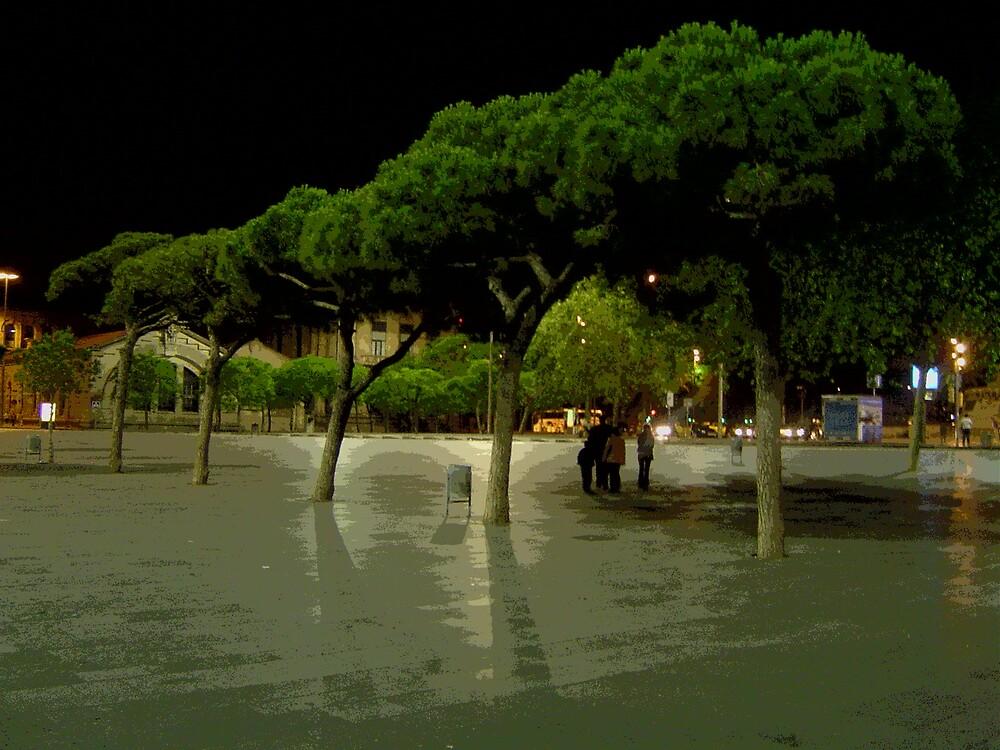 Catalan Tree by Stuart  Milton