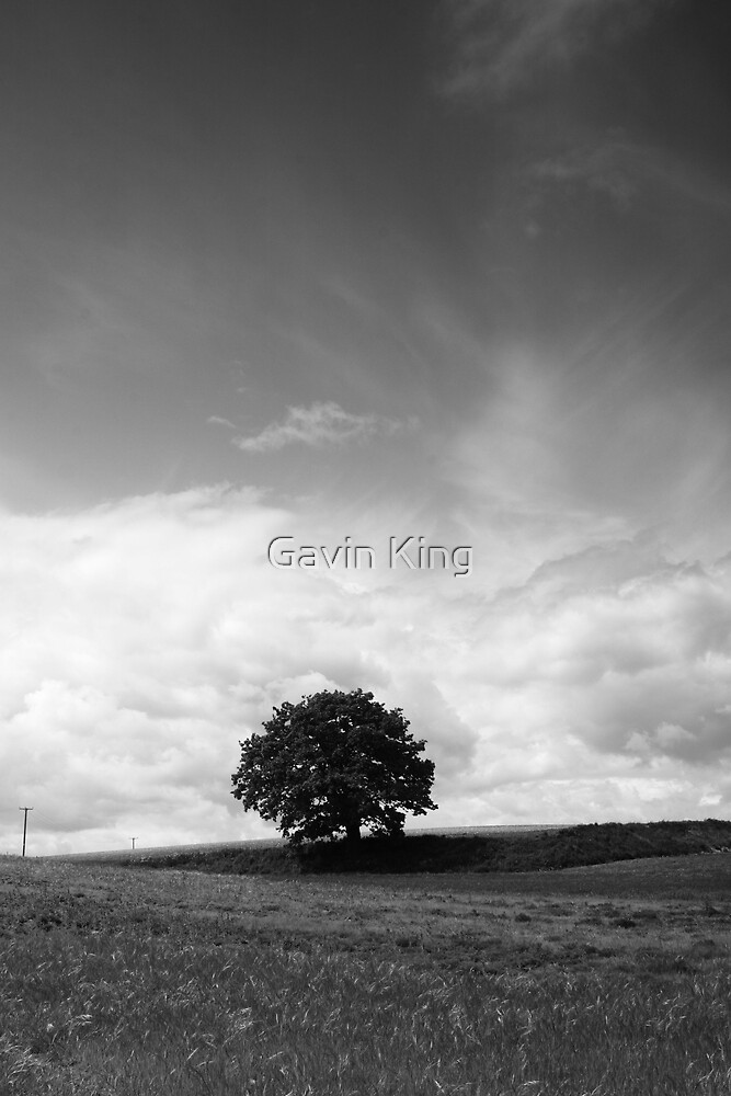 Life's here (mono) by Gavin King