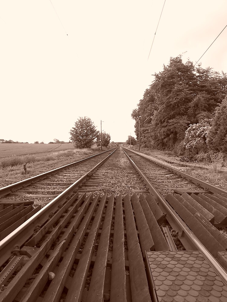 Rail Road by Stuart  Milton