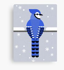 J is for Jay Canvas Print