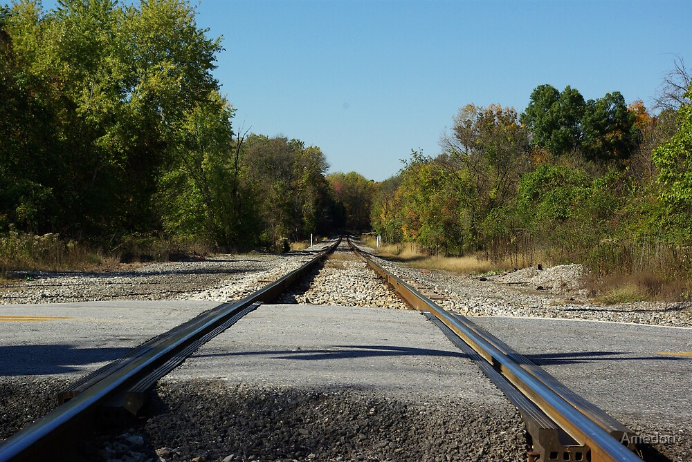 The Rails  by Amedori