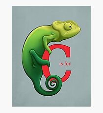 C is for Chameleon Photographic Print