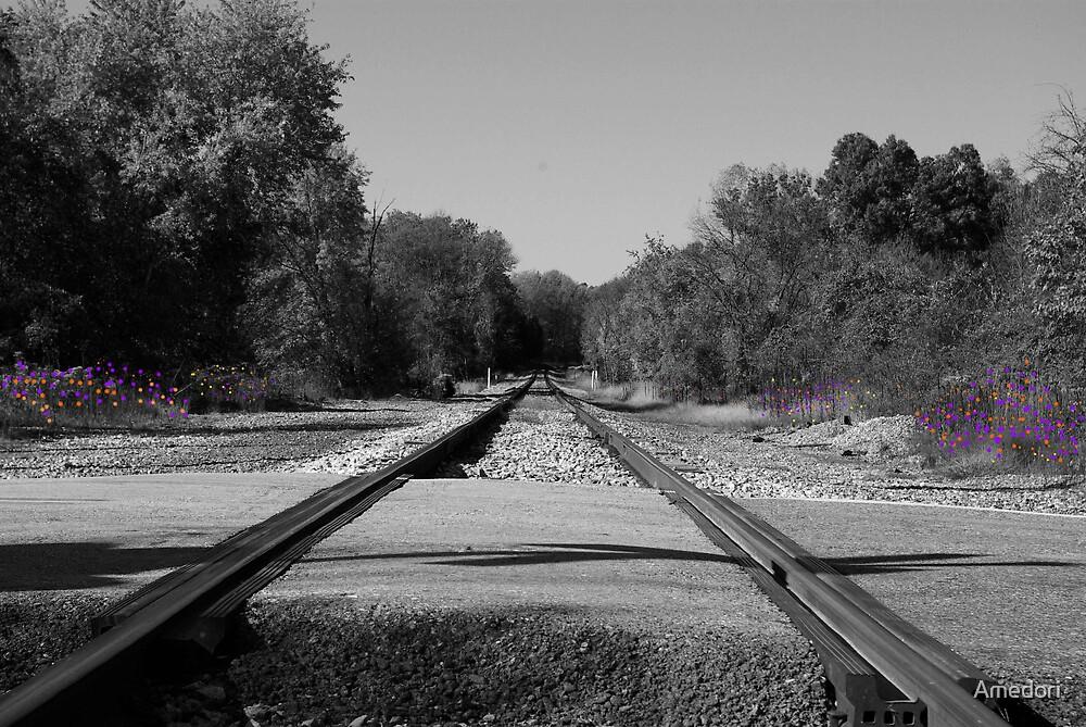 The Rails BW by Amedori