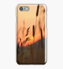 As dusk sets in iPhone Case/Skin