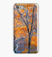 Enchanted Snow iPhone Case/Skin