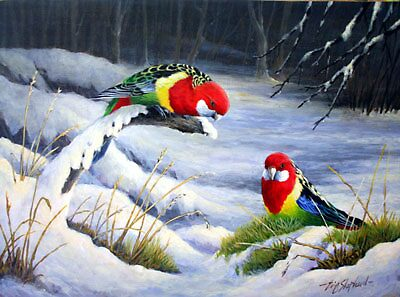 Winter Wonderland by eric shepherd