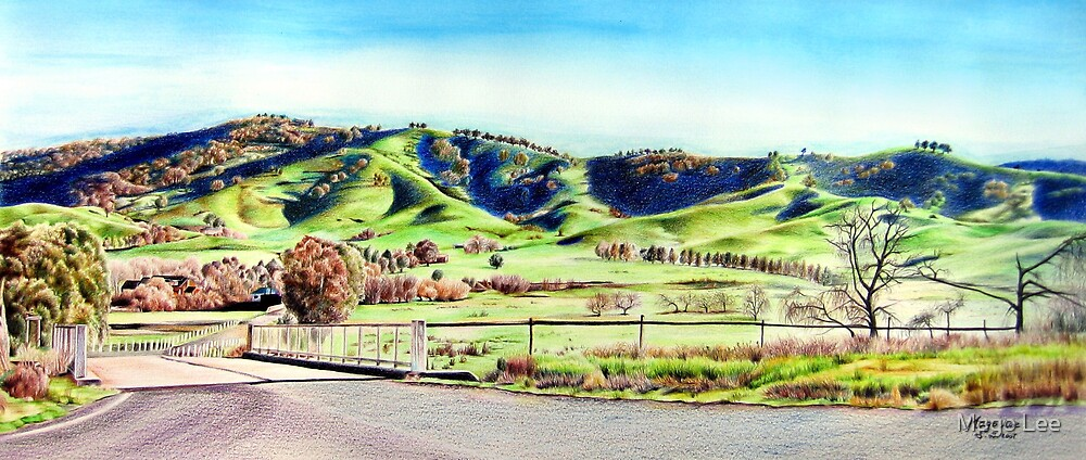 Landscape of NSW Australia by Mago Lee