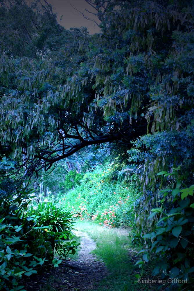 The intriguing pathway by Kimberley Gifford