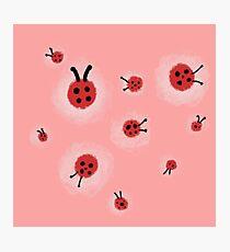 Ladybugs Photographic Print