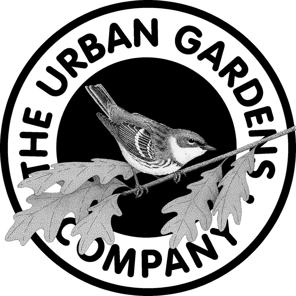 Bird in the Garden, by Urban Gardens by urbangardens