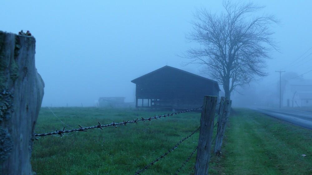 Tree and barn by Nina Andrews