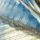 My Blue Heaven by Marilyn Cornwell